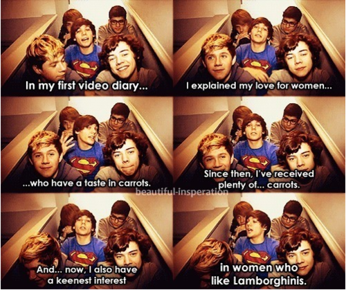 Louis Tomlinson Quote (About women lamborghins interview diary carrots car)