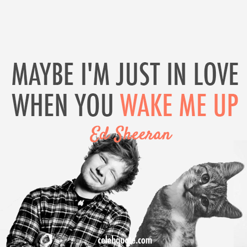Ed Sheeran, Wake Me Up Quote (About wake up mornings love in love celebquote bed)