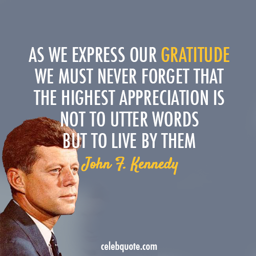 John F. Kennedy Quote (About life just do it gratitude appreciation)