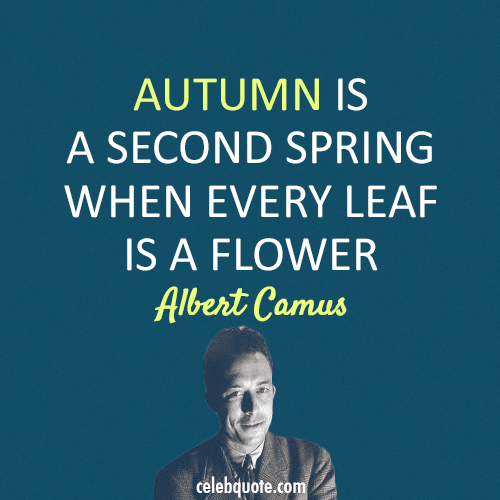 Albert Camus Quote (About spring flower autumn)