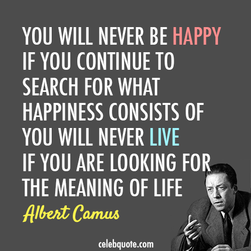 Albert Camus Quote (About meaning of life life happy happiness)