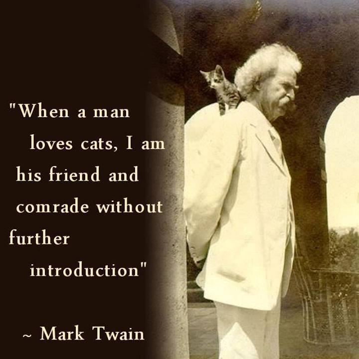 Mark Twain Quote (About friend comrade cats)