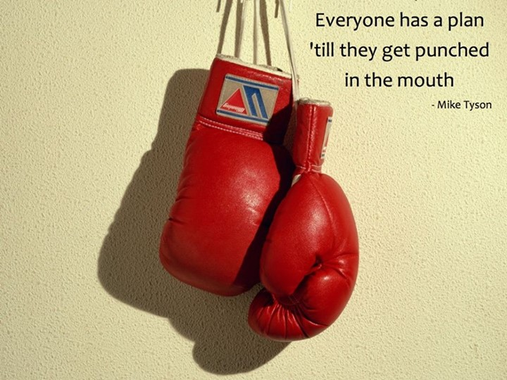 Mike Tyson Quote (About punched plan mouth)