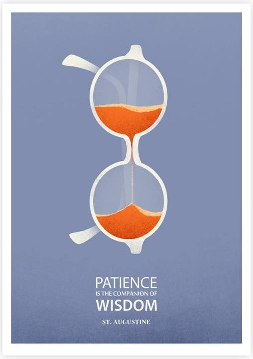 Saint Augustine Quote (About wise patience)