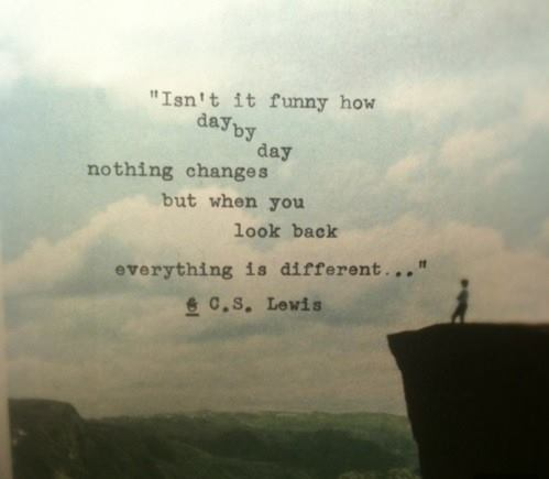 C. S. Lewis Quote (About same same but different funny different)