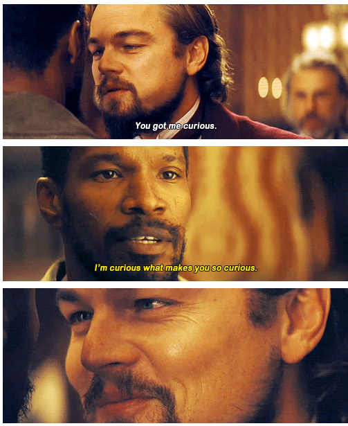 Django Unchained (2012) Quote (About strange curious)