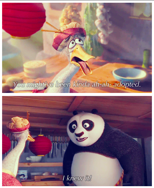 Kung Fu Panda 2 (2011) Quote (About father and son adopted)