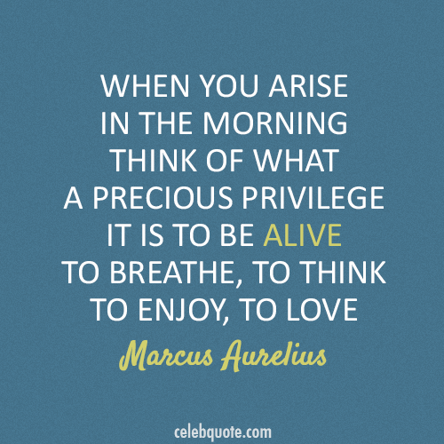 Marcus Aurelius Quote (About morning love breathe alive)