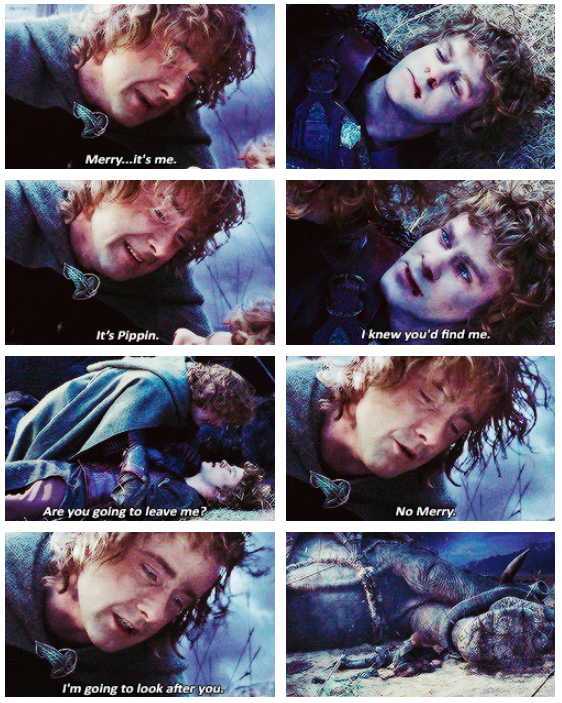 The Lord of the Rings: The Return of the King (2003) Quote (About friendship death scene bromance)