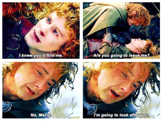The Lord of the Rings: The Return of the King (2003) Quote (About friendship friends death)