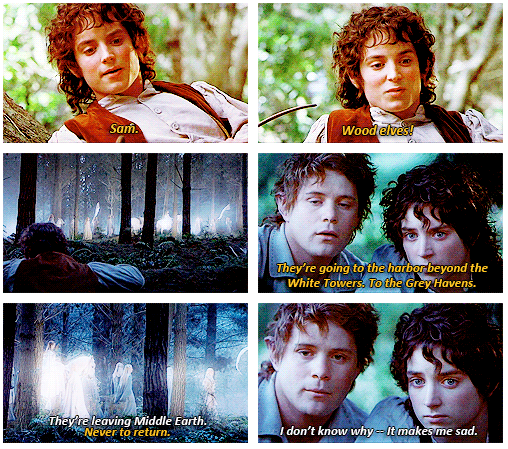 The Lord of the Rings: The Fellowship of the Ring (2001) Quote (About sad forest elf)